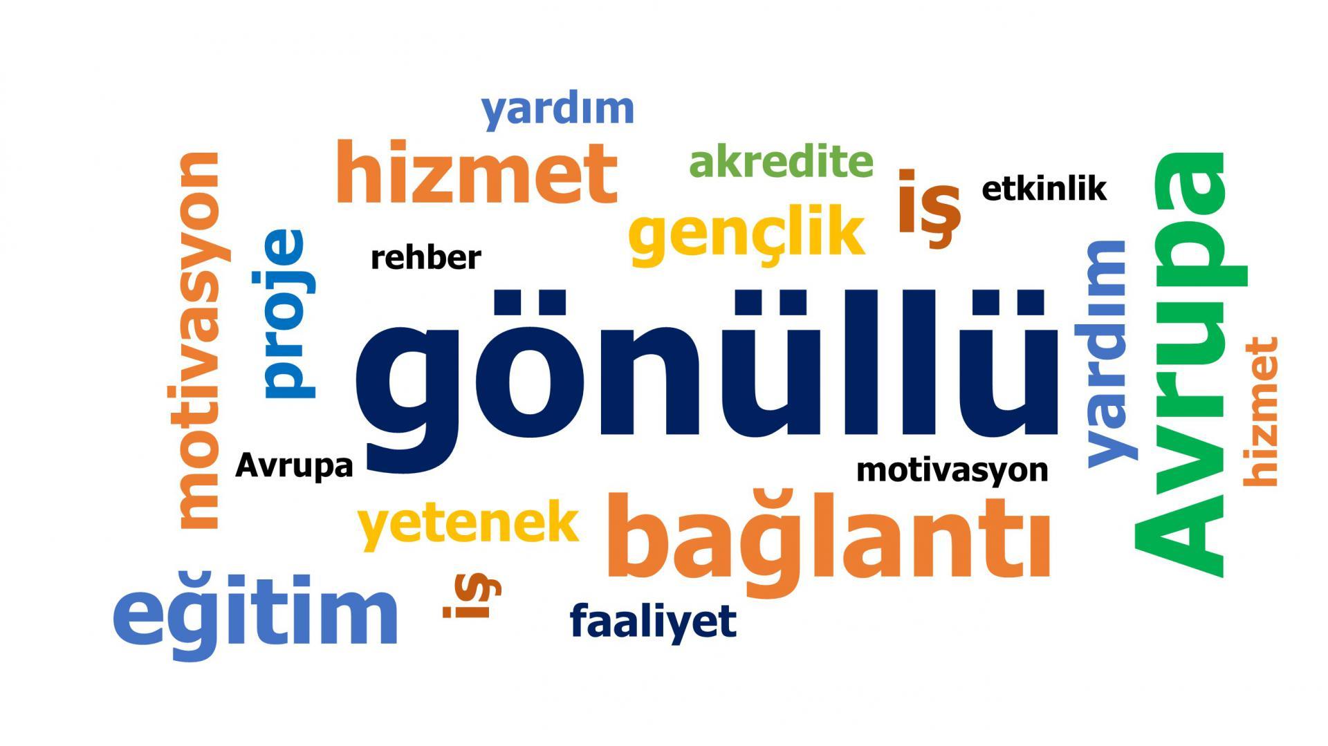 41 Soruda Avrupa Gönüllü Hizmeti