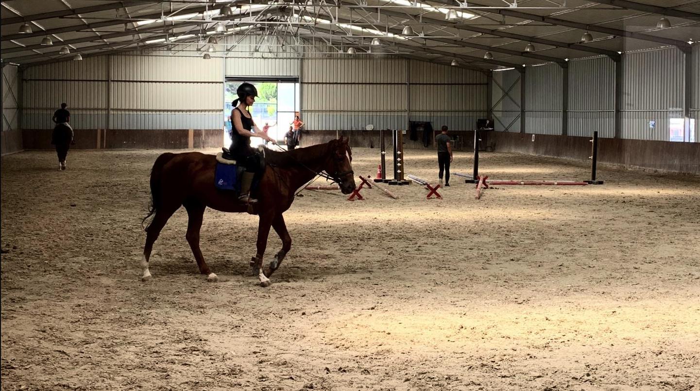 Atlar İle İletişim Kurmak Terapinin En Güzel Hali